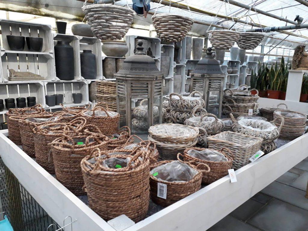 rieten manden voor planten bij Jonkheer Plantencentrum Hillegom